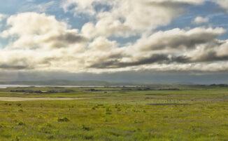harray landscape, orkney
