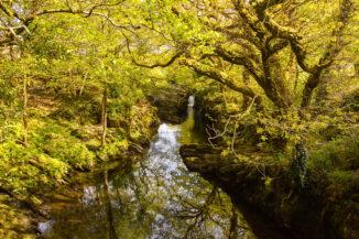 Aheny River, Co Kerry, Ireland