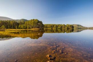 September morning reflections, Loch an Eilein, Strathspey