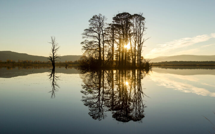 Loch Mallachie sunset in perfect callm