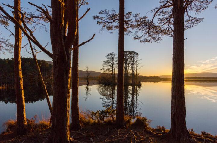 November sunset, Loch mallachie