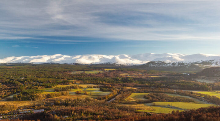 Winter panorama across Rothiemurchus to the snow-covered cairngorm mountains