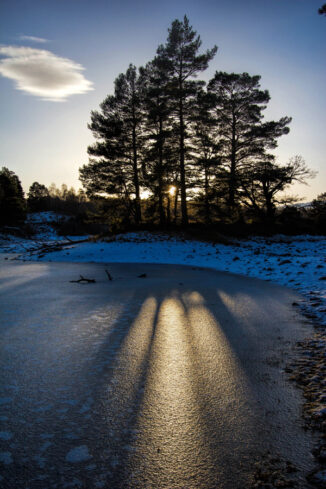 cy sunset silhouette on frozen Loch Vaa, cairngorms National Park