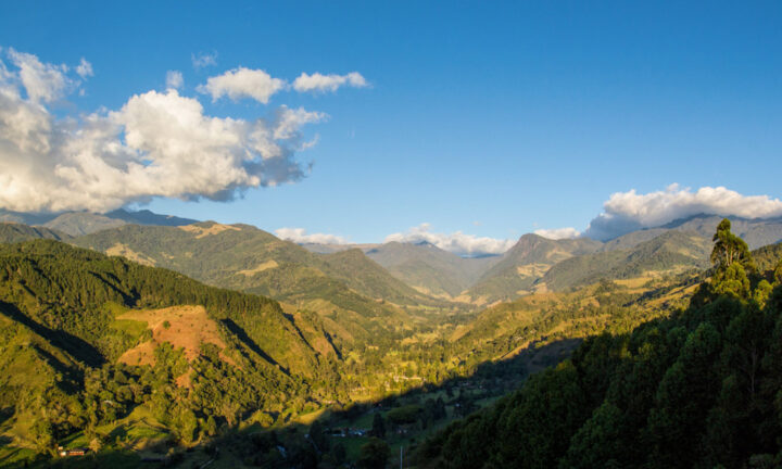 Cocora valley at sunset, from Salento